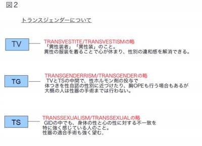 トランスジェンダーの説明